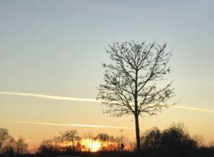 Europa Park Sonnenuntergang auf dem Parkplatz