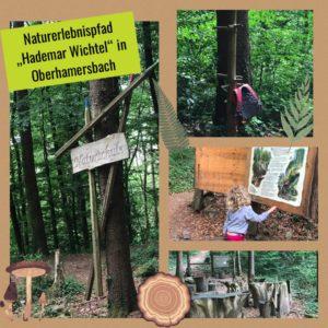 Naturschule des Naturerlebnispfads in Oberharmersbach